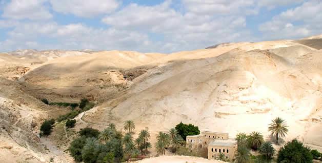 palestine - paysage 2